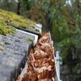 Gutter fiull of leaves