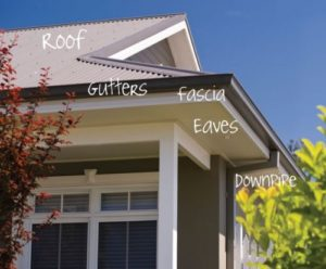 Roof gutters fascia downpipes